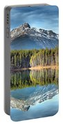 Nature's Reflections Portable Battery Charger