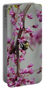 Natures View Portable Battery Charger