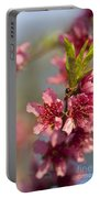 Nectarine Blossoms Portable Battery Charger