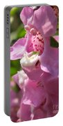 Nemesia Named Poetry Lavender Pink Portable Battery Charger