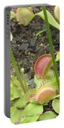 Nepenthes Portable Battery Charger