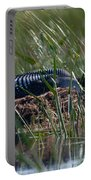 Nesting Loon Portable Battery Charger