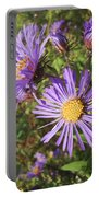 New England Aster Wildflower - Purple Portable Battery Charger