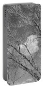 New Mexico Series - A Cloud Behind Black And White Portable Battery Charger