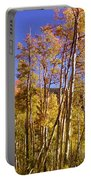 New Mexico Series - Autumn On The Mountain Portable Battery Charger