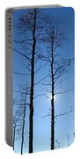 New Mexico Series - Bare Tree Sky  Portable Battery Charger