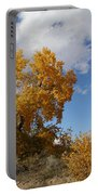 New Mexico Series - Desert Landscape Autumn Portable Battery Charger