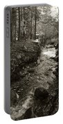 New Mexico Series - Late Winter Streambed Portable Battery Charger