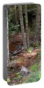 New Mexico Series - Near The River Portable Battery Charger