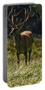 New Zealand Elk Portable Battery Charger