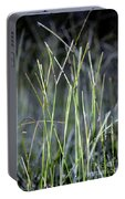 Night Walk Through The High Grass Portable Battery Charger