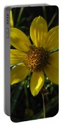 Nodding Bur Marigold Portable Battery Charger