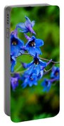 None Arrayed More Beautiful Portable Battery Charger