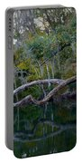 North Florida River Reflections Portable Battery Charger