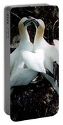 Northern Gannets Portable Battery Charger