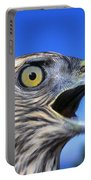 Northern Goshawk With Open Beak Portable Battery Charger