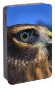 Northern Harrier Raptor In Profile Portable Battery Charger