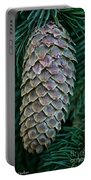 Norway Spruce Cone Portable Battery Charger