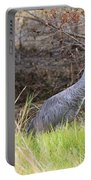 November Sandhill Crane Portable Battery Charger