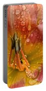 Nursery School Daylily Portable Battery Charger
