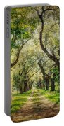 Oak Tree Lined Drive Portable Battery Charger