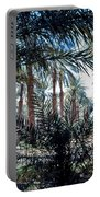Oasis At Death Valley Portable Battery Charger
