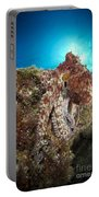 Octopus Posing On Reef, La Paz, Mexico Portable Battery Charger
