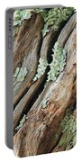 Old Wood And Lichen Portable Battery Charger