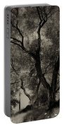 Olive Trees 9 Portable Battery Charger