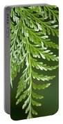 One Hanging Fern Portable Battery Charger