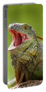 Open Mouth Iguana Portable Battery Charger