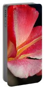 Open Rose After The Rain Portable Battery Charger