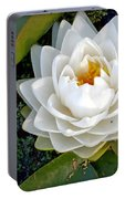 Optical Illusion In A Waterlily Portable Battery Charger