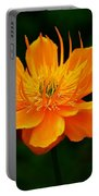 Orange And Yellow Portable Battery Charger