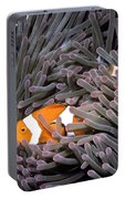 Orange Clownfish In An Anemone Portable Battery Charger