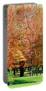 Orange Colored Trees Portable Battery Charger