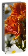 Orange Day Lilies In The Sun Portable Battery Charger