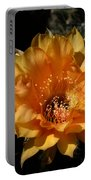 Orange Echinopsis Flower  Portable Battery Charger