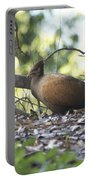 Orange Footed Scrub Fowl Portable Battery Charger