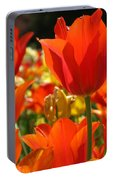 Orange Glow Portable Battery Charger