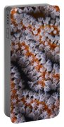 Orange Gorgonian Sea Fan With White Portable Battery Charger