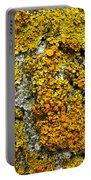 Orange Lichen - Xanthoria Parietina Portable Battery Charger