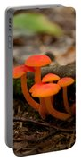 Orange Mushrooms Portable Battery Charger
