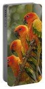 Orange Parakeets Chiang Mai Thailand Portable Battery Charger