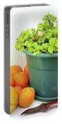 Oranges And Vase Portable Battery Charger