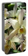 Orchid Iwanagara 9854 Portable Battery Charger