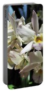 Orchid Iwanagara 9894 Portable Battery Charger