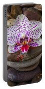 Orchid On Stack Of Rocks Portable Battery Charger