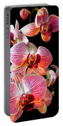 Orchids 2 Portable Battery Charger