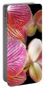 Orchids 3 Portable Battery Charger